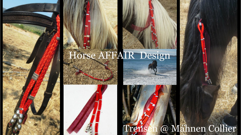 ein indianische wei heit besagt die feder am pferd native american wisdom horse events. Black Bedroom Furniture Sets. Home Design Ideas