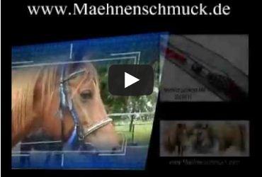 Equitana 2013-Horse Journal International-Horse Mane Western Style- Western Haarschmuck-Horse and Rider-Strass Tuning-Mähnenschmuck