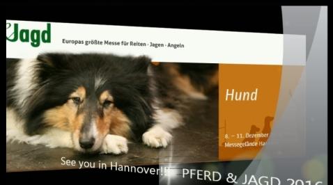 Dog Action Vorschau http://bit.ly/2h4wIRr