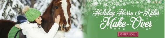 http://bit.ly/2gYFFsH Horse Holiday COUPON