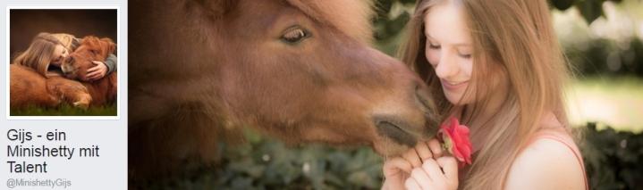 Show Star Pony Gijs % Maya VIP´s Vorschau http://bit.ly/2h4wIRr