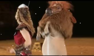 horseworld4u-pferd-und-jagd-2016-pferde-messe-expo-kult-trade-fair-gala-show-kinder-pferdeshow-mimamo-highlights-video-trailer-reitsport-ausstellung-16