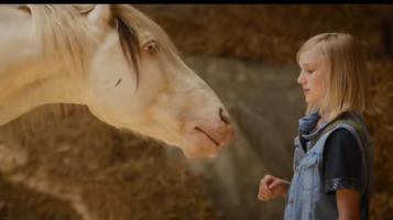 Video Trailer hier: http://bit.ly/2h4wIRr WENDY der FILM mit Jule Hermann Hauptdarstellerin