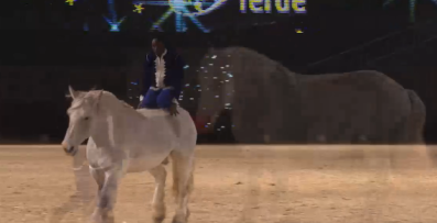 samuel-hafrad-new-star-on-stage-pferd-und-jagd-2016-premiere-horse-show-natural-horsemanship-pferdefluesterer-34