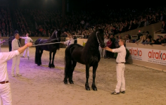KFPS 2017 FINALE Impressionen http://google-exclusive.com Royal Horse Expo Channel